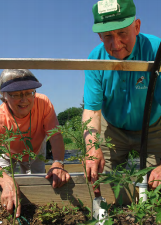 A couple in their 70's digs in dirt, elevated on an accessible gardening table.