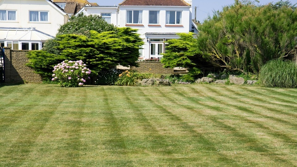 Photo of a lawn in front of homes
