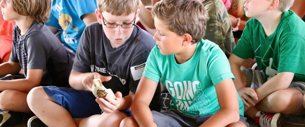 Kent County Campers looking at turtles