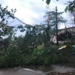 House with tree down due to storm damage
