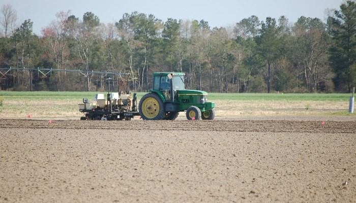 A green tractor working in the field.
