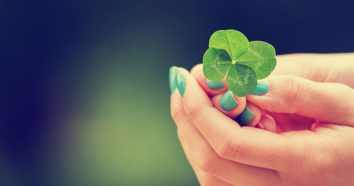 A girl holds a four leaf clover.