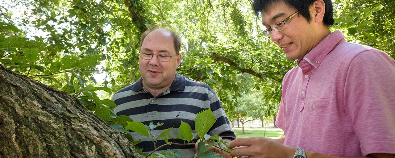 Faculty colleagues work on a research project to correlate raindrop size to forest ecology.