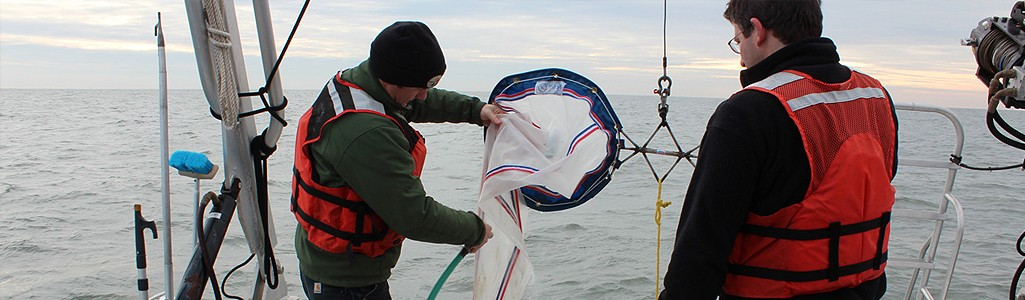 Researchers on a vessel with a plankton tow.