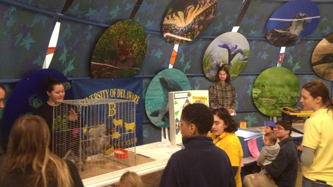Animal Science Club at the University of Delaware