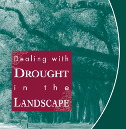Dealing with drought cover