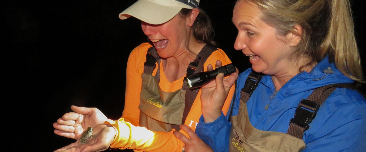 Two master naturalists are shocked to find a gray tree frog in the dark.