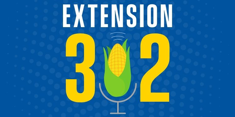 Extension302 Podcast Graphic
