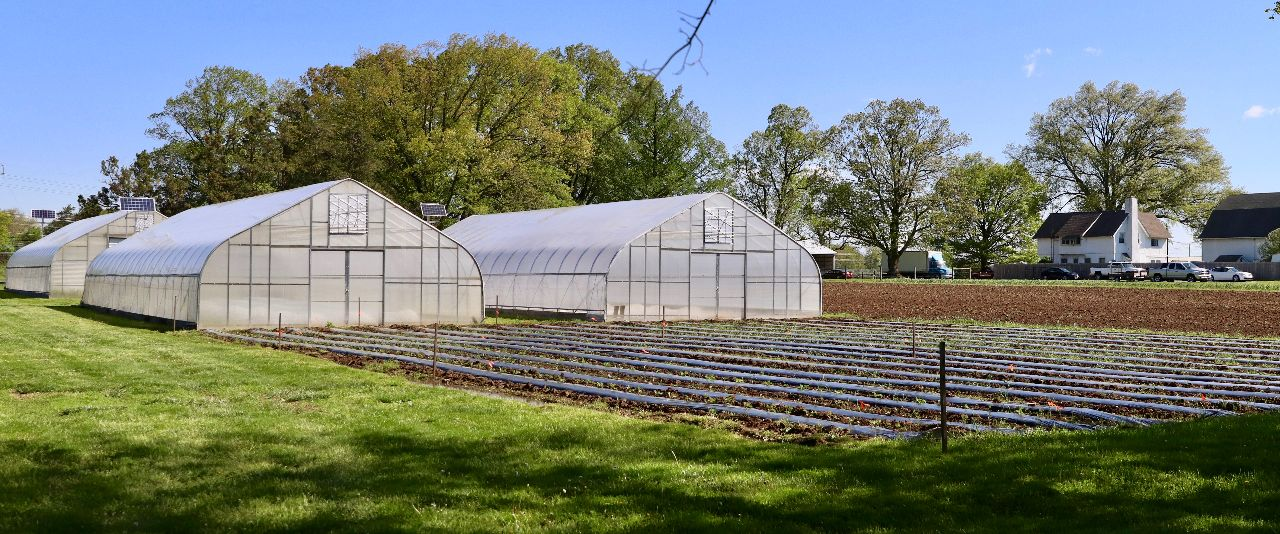 350-acre farm right on campus