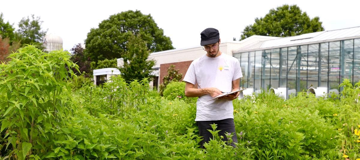 John Kaszan stands in a grasslands research plot in front of UD's Fischer Greenhouse.