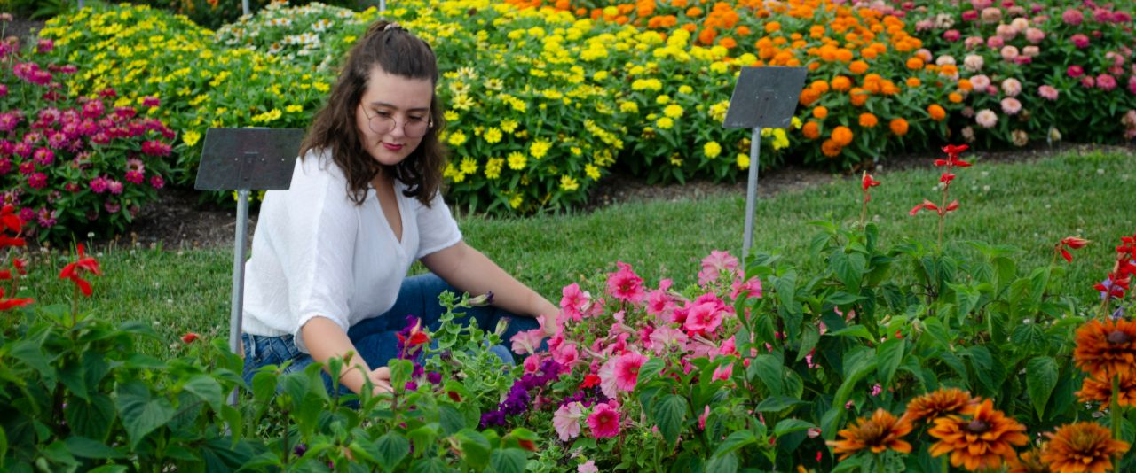 Undergraduate works in the colorful plant science research plots.