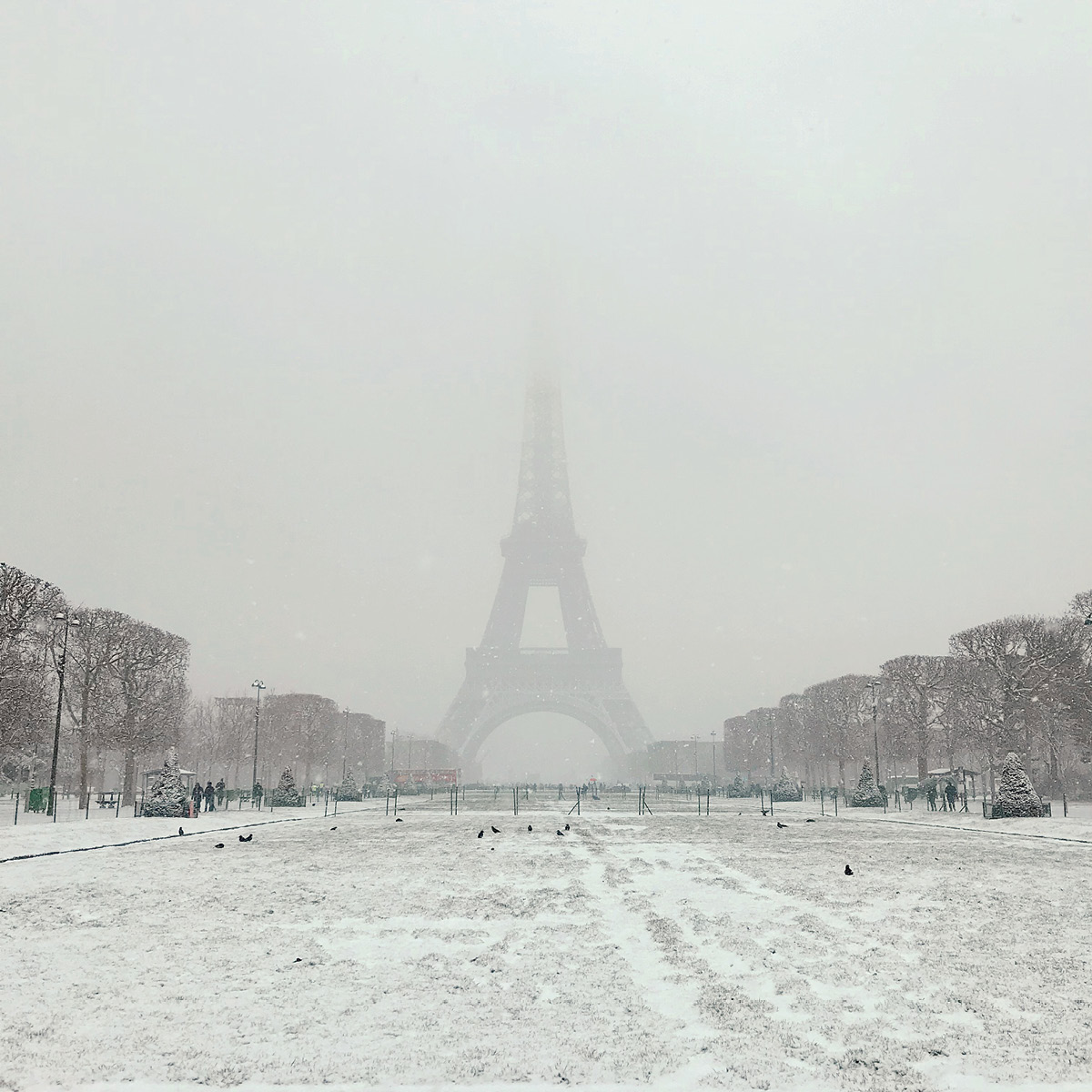 A view of the Eiffel Tower emerging from a snowy sky.