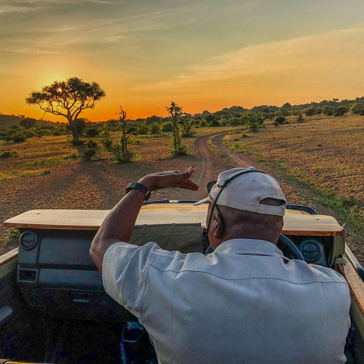 A photo of a man looking out over a nature scene in Botswana.