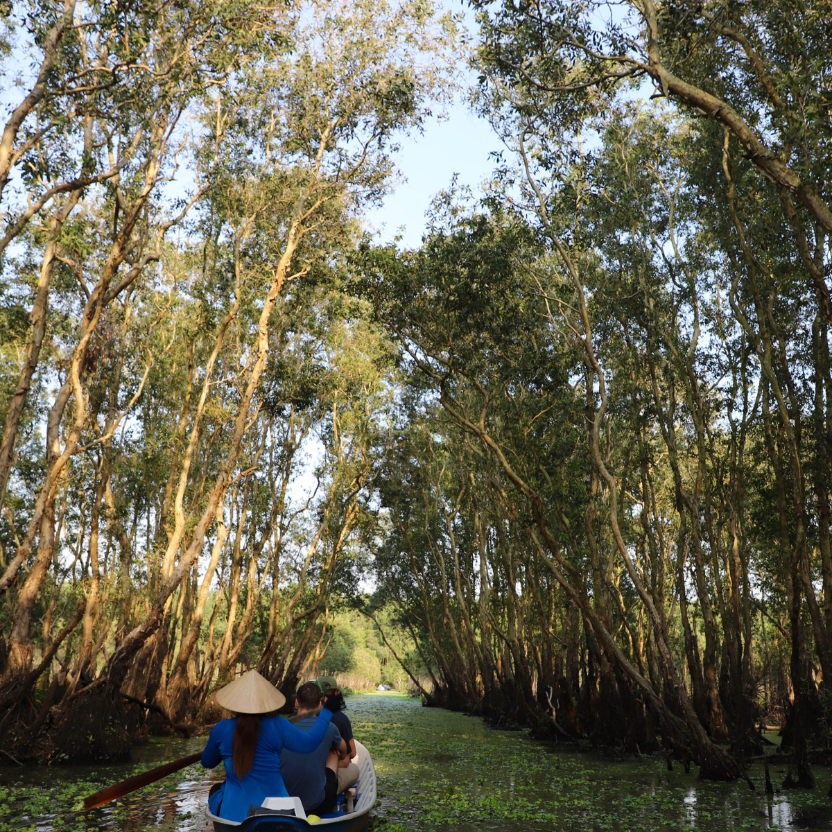 On a small paddle boat outside of Cán Thó, Vietnam, a woman maneuvers the still, winding waters in the shade of the century old trees.