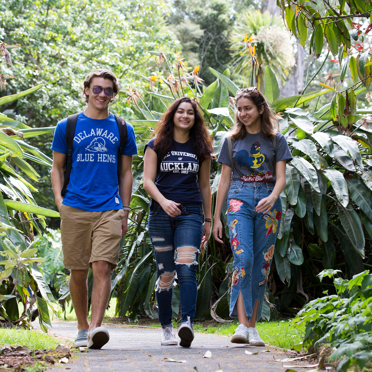 A group of students walk to class
