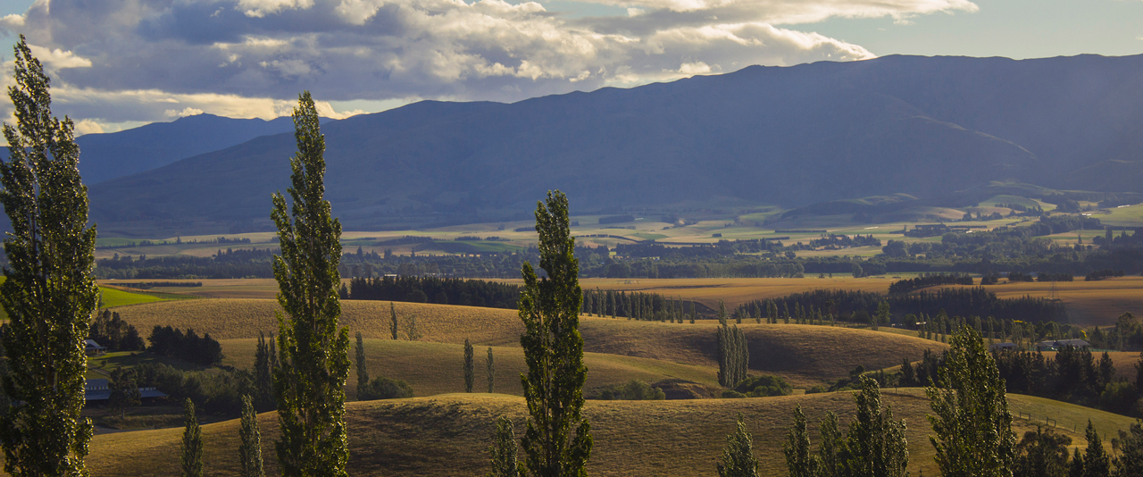 A photo of a landscape in New Zealand