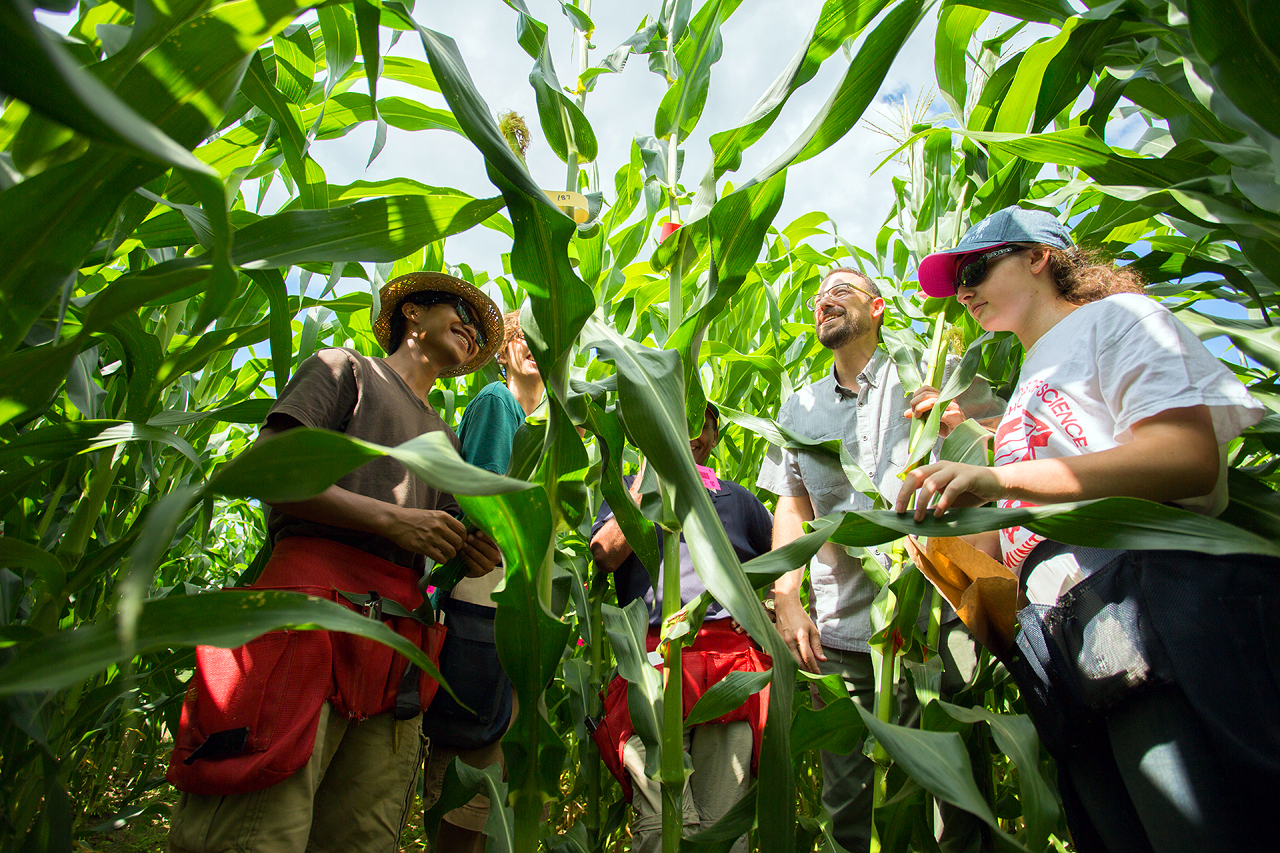UD Plant Science students conduct field research