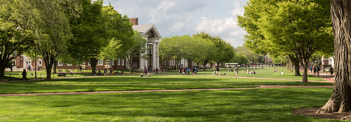 The Green at UD looking stunning on a bright spring or summer day.