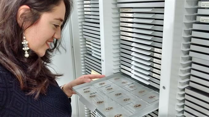 Doctoral students attend Chinese Object Study workshop