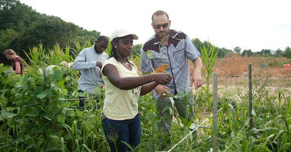 Susan Gachara has studied maize lethal necrosis with Randy Wisser, associate professor of plant genetics, during her time as a Borel Fellow.