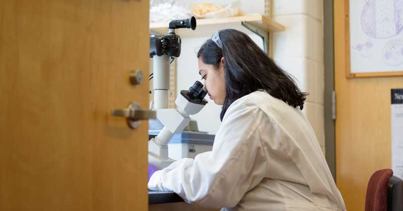 Doctoral student leads international effort to uncover properties of polymer nanoparticles