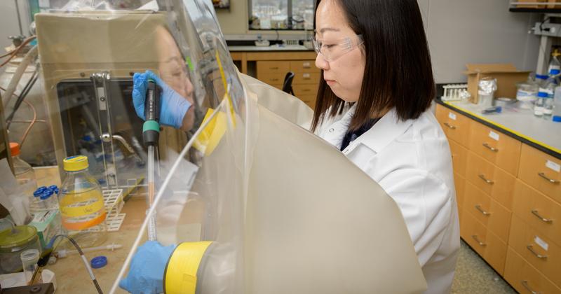 Delaware Environmental Institute Fellow trying to measure salt marsh metals