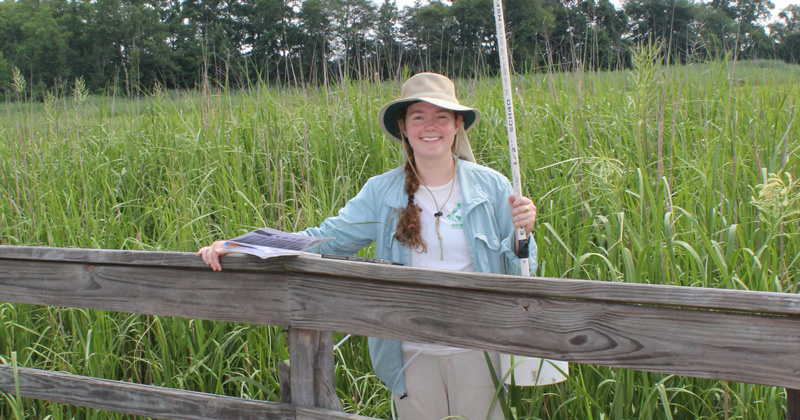 Delaware Environmental Institute Fellow trying to demystify chemistry of biochar