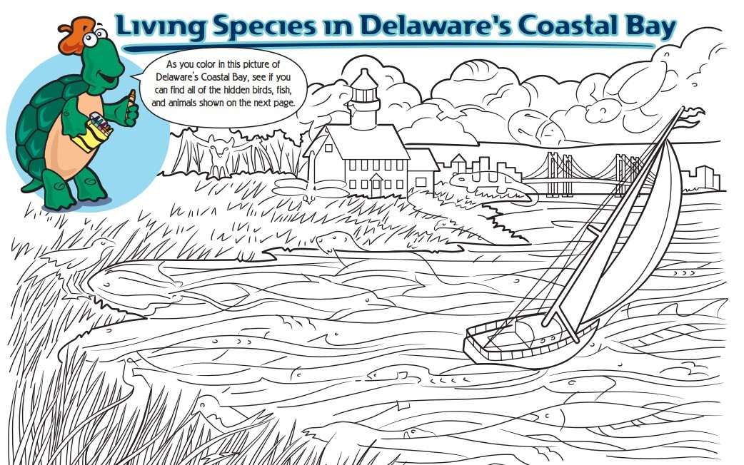 A link to download the Critters of Delaware Bay activity