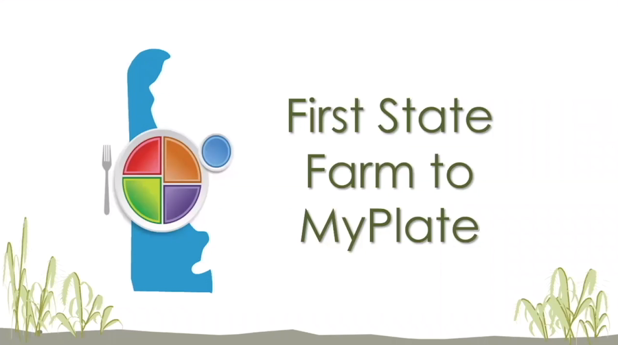 "An image that shows Delaware and a plate and says ""First State to My Plate"""