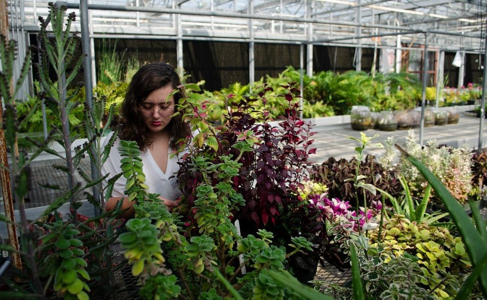 Plant_Science_Erin_Fogarty_Greenhouse-1