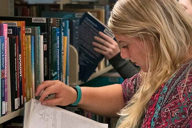 Student reading a book in the Marine Studies Library