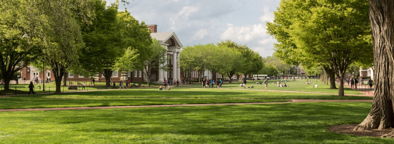 Experience UD