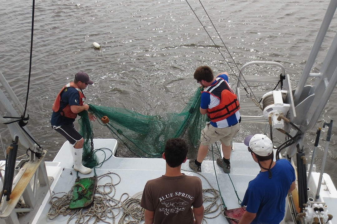 Students trawling from stern of R/V Joanne Daiber