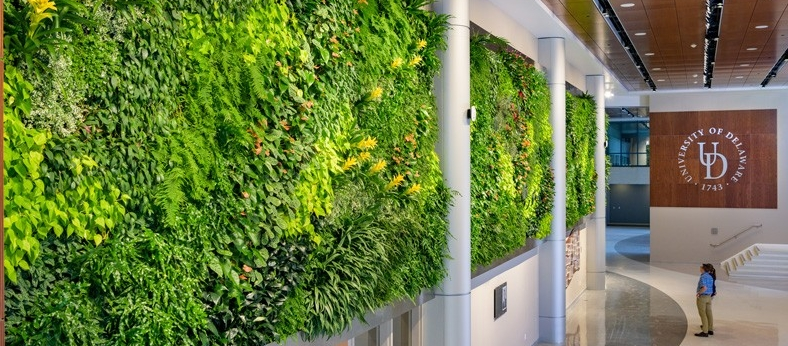 Campus-STAR_Tower-Living_Wall-110718