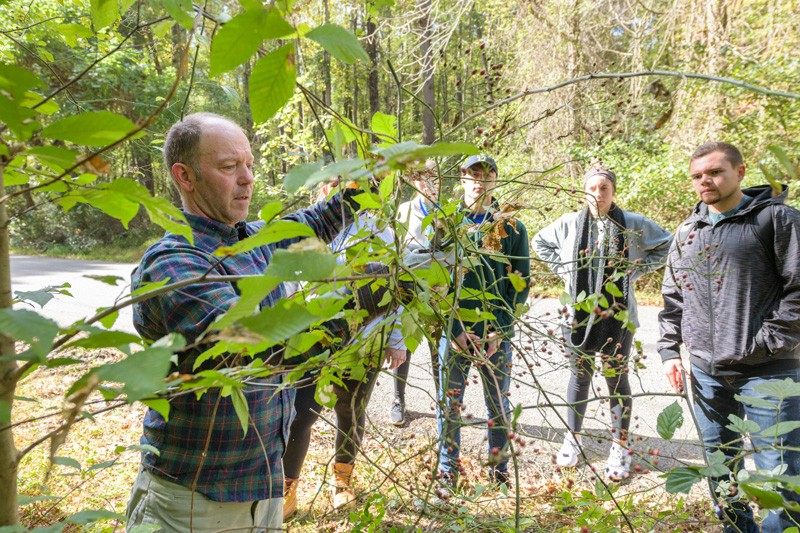Prof. McKay Jenkins shows students in his environmental literature class how to identify and remove some invasive plants from the woods in White Clay Creek State Park.