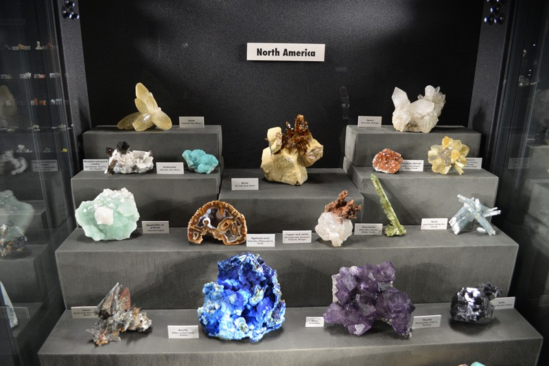 Specimens from across North America such as Calcite from Missouri and Agatized coral from Tampa, Bay Florida are on display at UD's Minerological Museum.