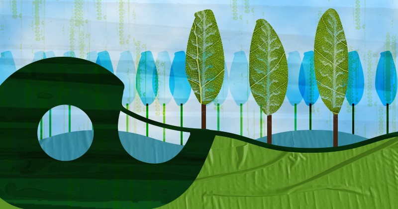 Engineers at the University of Delaware have developed a novel process to make tape out of a major component of trees and plants called lignin.