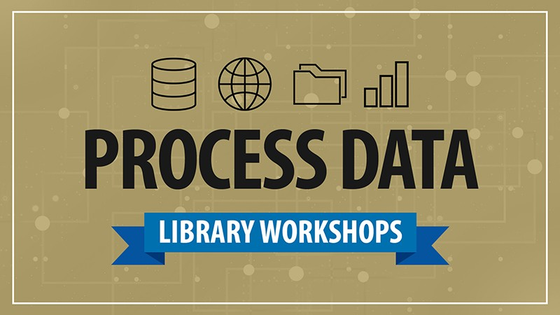 Library workshops how to process data