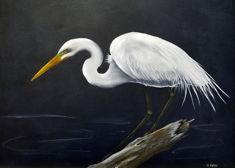 Great Egret, an oil painting by OLLI artist Barbara Estep, which will be on display at the exhibit.