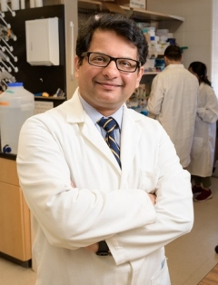 Salil Lachke, UD associate professor of biological sciences