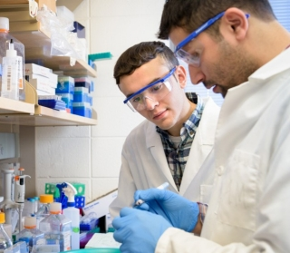 "Undergrad Francisco ""Frankie"" Hernańdez (left) watches closely as grad student Sandeep Aryal works in Salil Lachke's lab."
