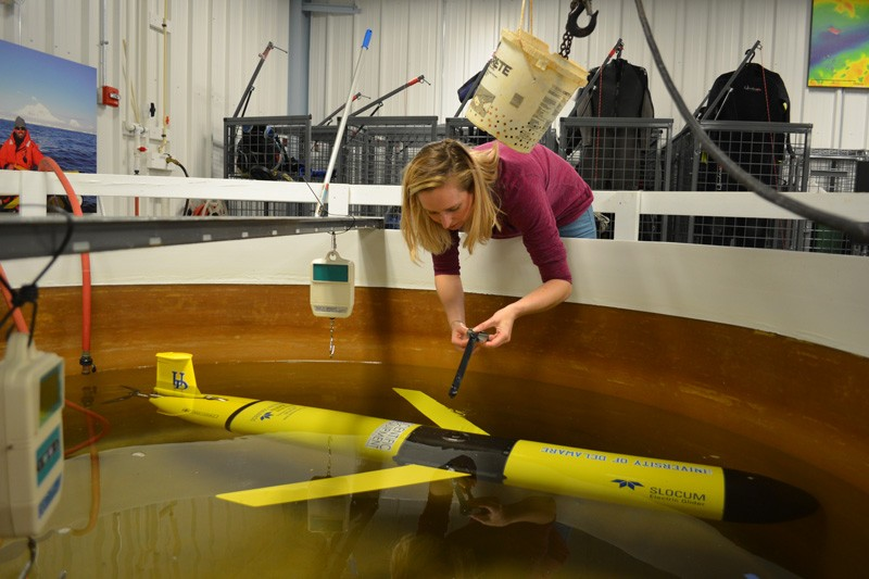 UD's Danielle Haulsee prepares an underwater glider for work in the White Shark Café, an area of the Pacific Ocean situated halfway between the Hawaiian Islands and Southern California.