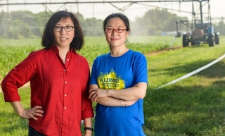 Professor Yan Jin (left) and postdoctoral researcher Wenjuan Zheng hope to develop new technologies to increase food production using drought-fighting microbes that naturally live in soil.