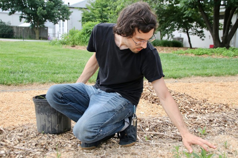 UD graduate student John Kaszan works on a plot of ground to help area golf courses superintendents choose the native plants they use on areas that are out of play or naturalized.