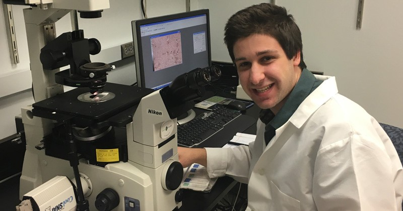 UD neuroscience student Jackson Mace works in a lab at Washington University, where he conducted research related to neurodegenerative diseases such as Parkinson's and Alzheimer's.