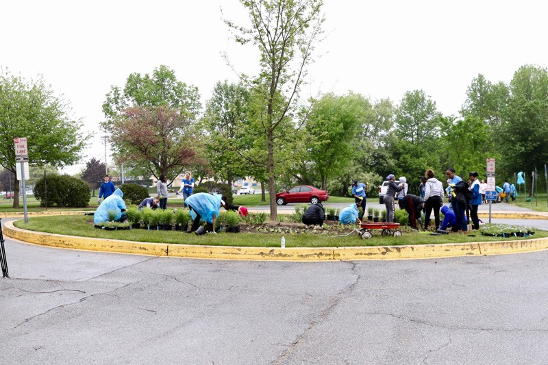 Volunteers from across the university helped install nearly 200 plants and 500 deep root landscape plugs at several sites around UD's Children's Campus, including a butterfly garden in the front parking lot of the Early Learning Center.