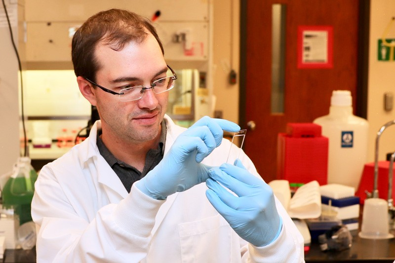 Ryan Arsenault's research includes antibiotic alternatives for chickens.