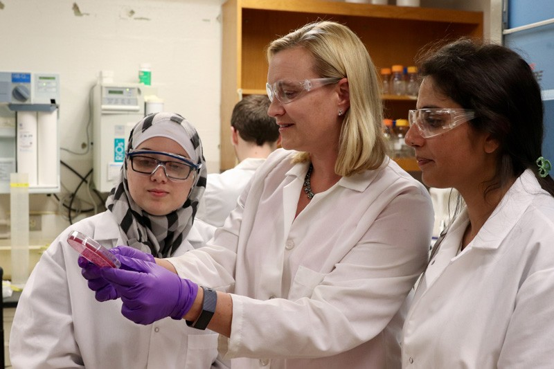 Kali Kniel (center) conducts lab work with Animal and Food Sciences' graduate student Alexis Omar (left) and postdoctoral scientist Pushpinder Litt (right)