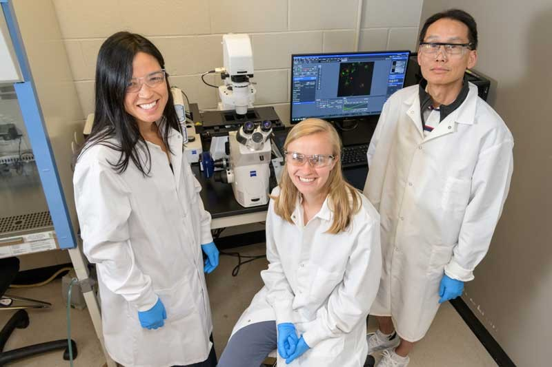 Doctoral student Rachel Lieser (center) partnered with her two faculty advisors, Wilfred Chen, Gore Professor of Chemical Engineering and Millie Sullivan, Centennial Professor of Chemical and Biomolecular Engineering, on breast cancer research.