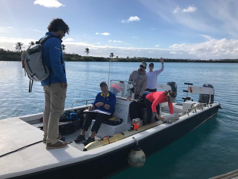 UD Prof. Art Trembanis led a group of students to Bermuda where they worked with researchers from the Bermuda Institute of Ocean Sciences to explore underwater.